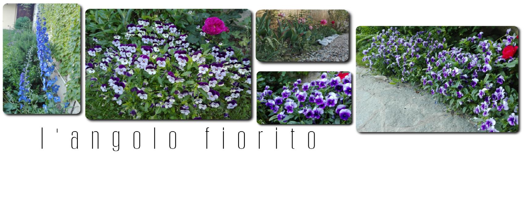 Testata-langolo-fiorito okx7